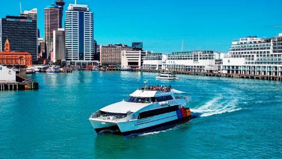 Auckland Harbour Cruise