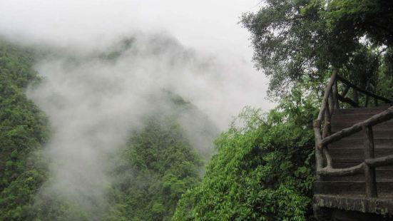 紫微山國家森林公園