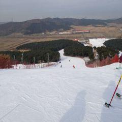 白清寨滑雪場用戶圖片