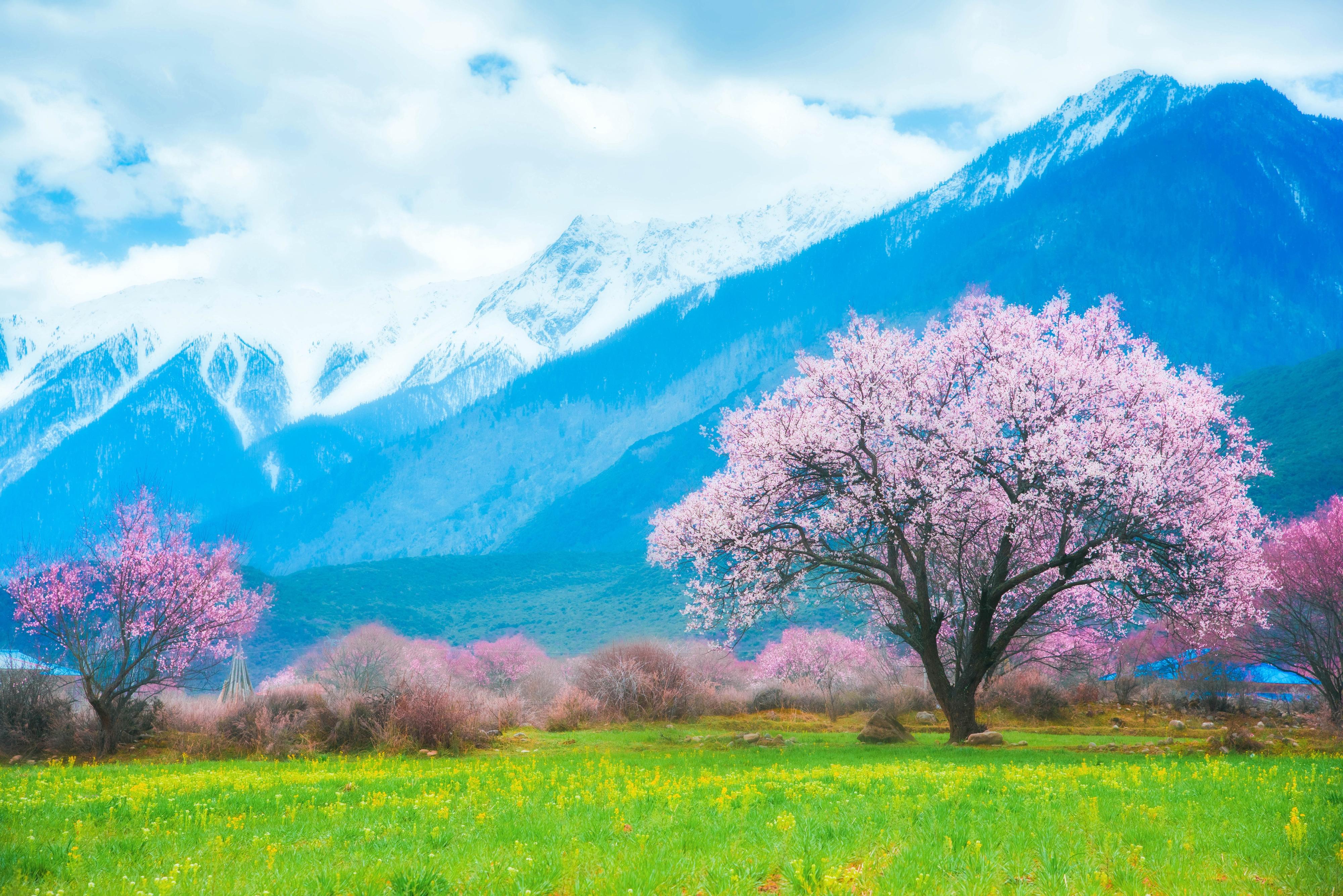 崗鄉自然保護區