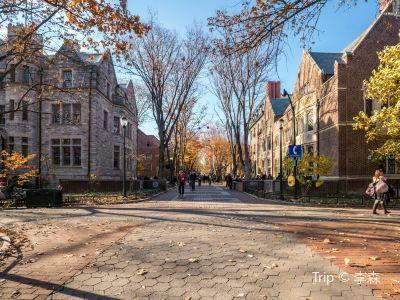 賓夕法尼亞州立大學