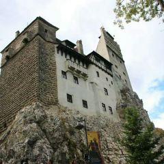 吸血鬼城堡用戶圖片
