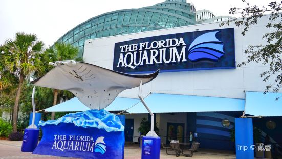 The Florida Aquarium