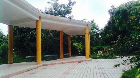 Dawei Park