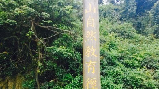 鷹巢山自然教育徑