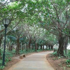 Baishamen Park User Photo