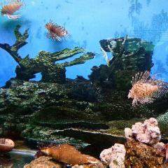 泉州海絲野生動物世界用戶圖片