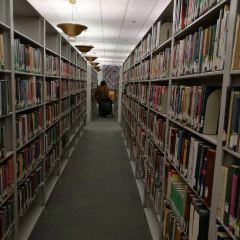 해럴드 워싱턴 도서관 여행 사진