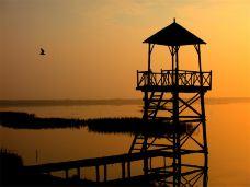 黄河三角洲生态文化旅游岛-无棣-doris圈圈