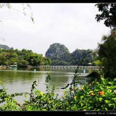 Xinghu Wetland Park User Photo