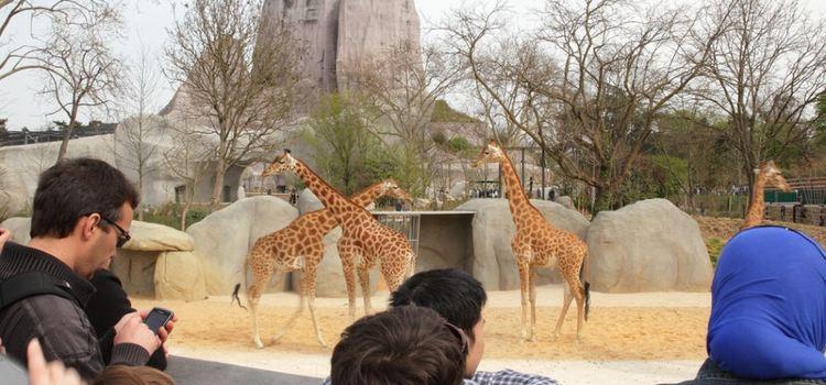 巴黎動物園2