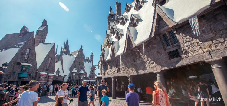 The Wizarding World of Harry Potter1