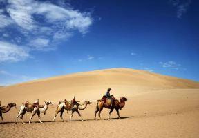 東北地區最大的沙漠帶,沒有寸草不生的荒蕪,只有八百里瀚海的狂歡