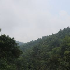 Yunyong Forest Park User Photo