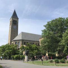 康奈爾大學用戶圖片