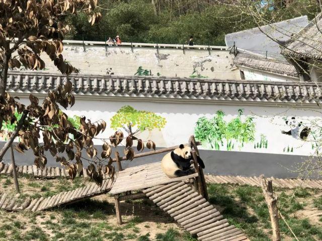 鄭州周邊這個不起眼的小縣竟私藏了這麼多美景!你去過幾個?