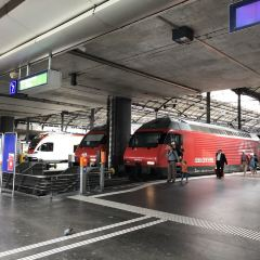 Lucerne Station User Photo
