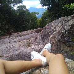 Limu Mountain Forest Park User Photo