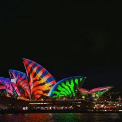 Vivid Sydney User Photo