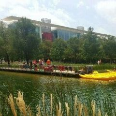 Discovery Green User Photo