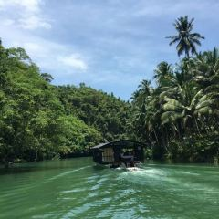 Loboc River Cruise User Photo