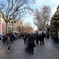 河道蘭布拉街用戶圖片