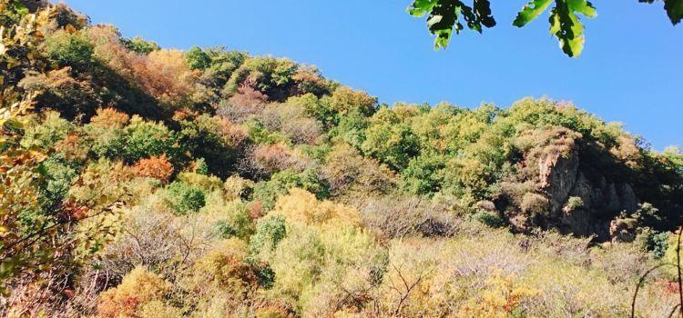 Yesanpo White Grass Scenic Area3