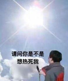 """颱風過境大暑來襲,快來跟我一起""""趁熱逃跑""""!"""