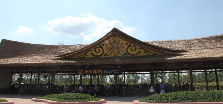 南通森林野生動物園2
