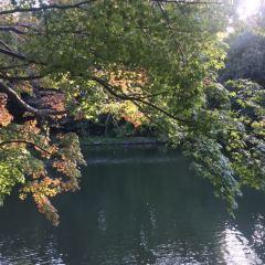 高岡古城公園用戶圖片