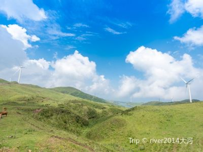 烏蒙大草原