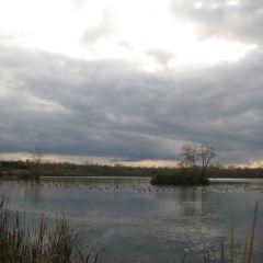 Iroquois National Wildlife Refuge User Photo