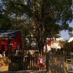 鷹潭公園用戶圖片