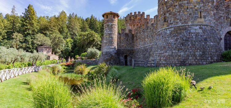愛的城堡酒莊1