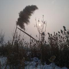 大泉溝ダムのユーザー投稿写真