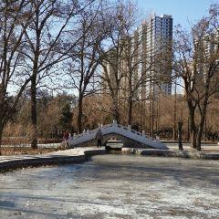 Dazhao Park User Photo