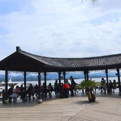 漁樂島用戶圖片