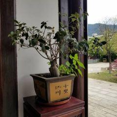 Zhuzi Culture Court User Photo