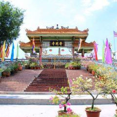 중국사원 여행 사진
