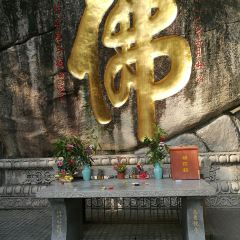 南普陀寺用戶圖片