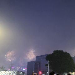 香港新春花車巡遊用戶圖片