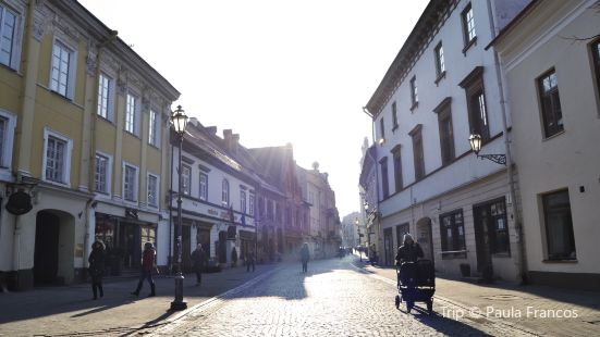 Vilnius Street (Vilniaus Gatvė)