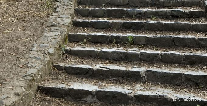 99 Steps1