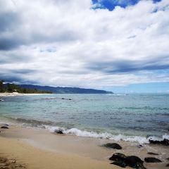 Sea Hawaii User Photo