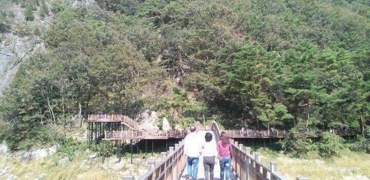 Tamyang1