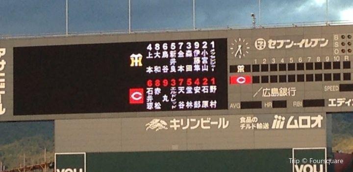 MAZDA Zoom-Zoom Stadium Hiroshima1