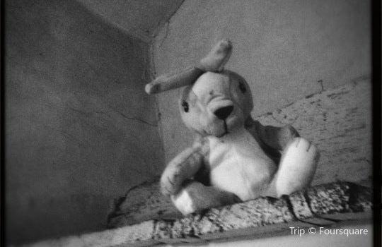彼得兔藝廊2
