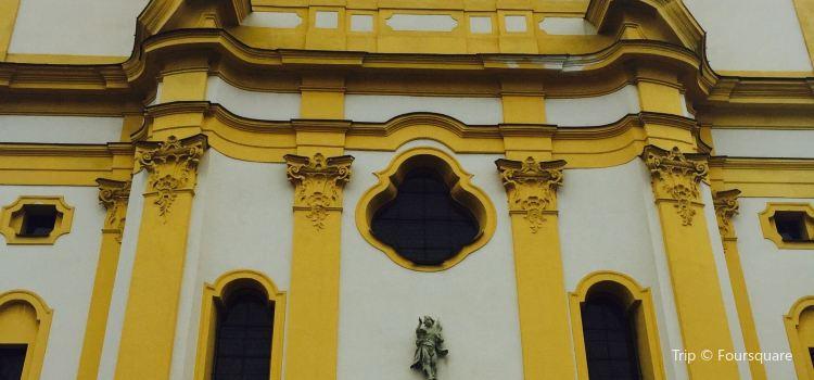 維爾頓聖殿