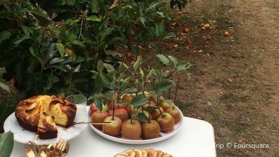 Tanbella Orchard