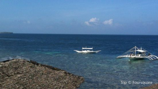 Neptune Diving Adventure Moalboal & Santander